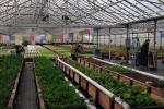 Ouroboros farms 3